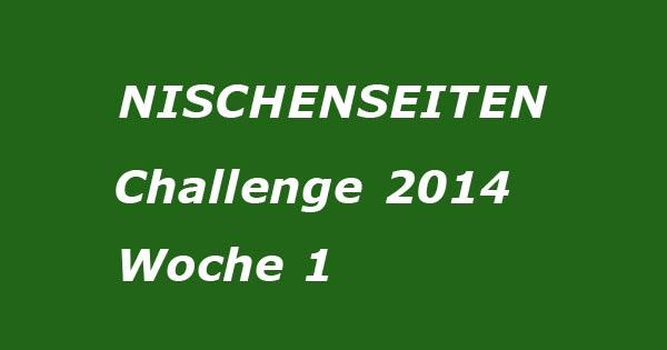 nischenseiten-challenge-Woche1