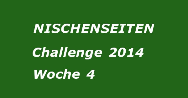 Report Nischenseiten Website Woche 4