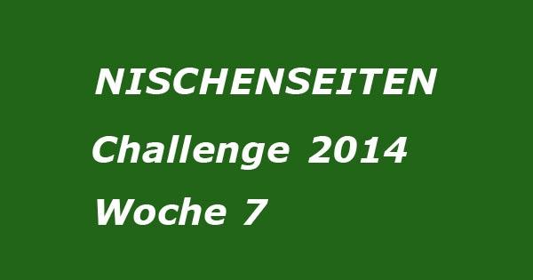 nischenseiten-challenge-Woche12